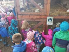 Výlet na Zlatou farmu ve Štětovicích